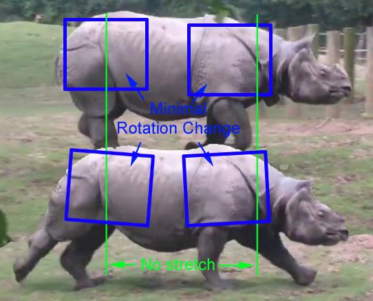 rhino_03